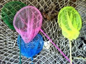 Four nets